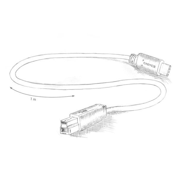 Cadyce CA-CU3BM USB-C type to USB 3.1 Standard B type Male Cable